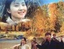 中国故事剧情介绍