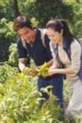 情义两重天精彩剧照3/17