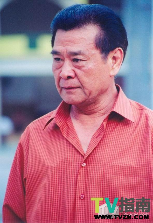 阳光丽人电视剧剧照_第二春杜平扮演者达式常-电视指南