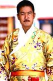 西藏秘密剧情介绍