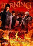 燃烧(2015年吴斌执导电视剧)