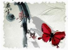 鲲鹏与蝴蝶