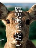鹿男与奈良