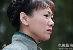 川东游击队剧情介绍